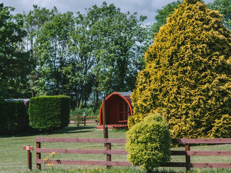 Shrubbery Touring Park, Lyme Regis, Dorset, Devon 107